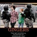 gingers-gingers-g-20-protestoers-rioters-cops-police-swat-demotivational-poster-1254269410